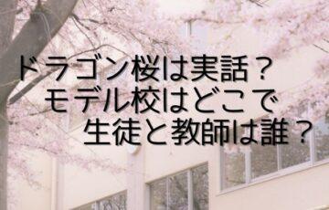 ドラゴン桜 実話