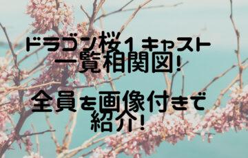 ドラゴン桜1 キャスト 相関図