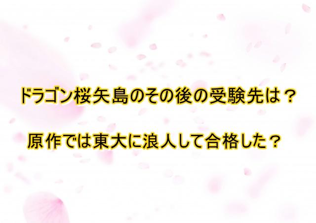 ドラゴン桜 その後 矢島