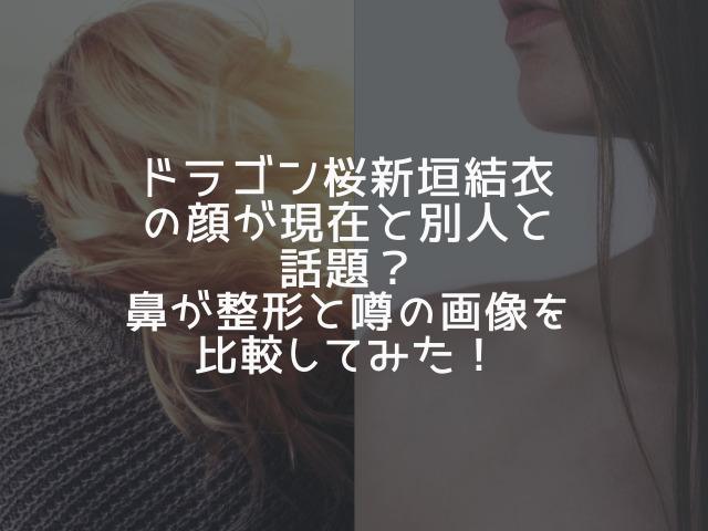 ドラゴン桜 新垣結衣 別人、鼻